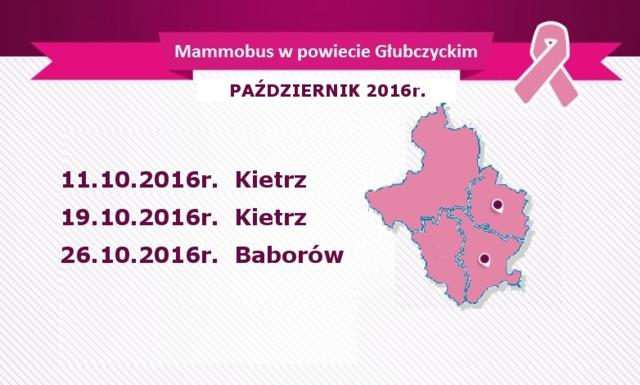 mammobus w powiecie X 2016r..png