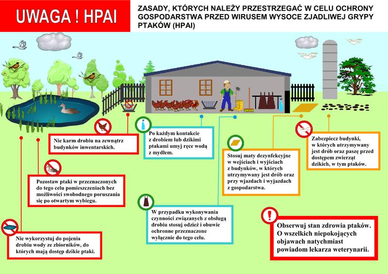 Zasady postepowania HPAI1.png