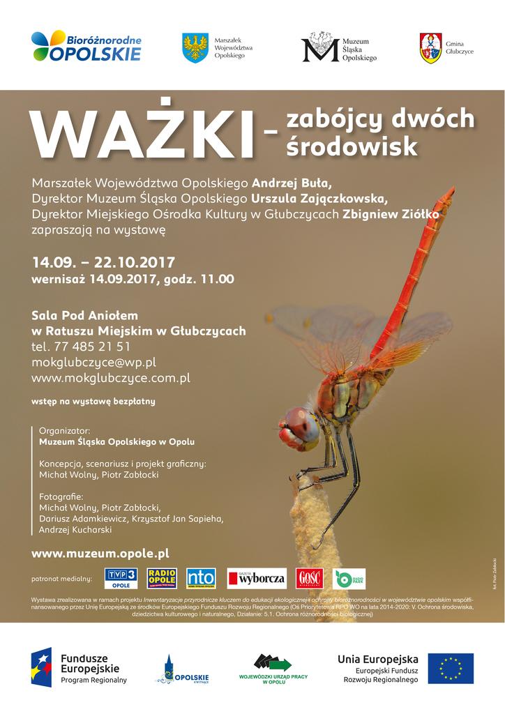 Wystawa ważek - Ratusz_Głubczyce.jpeg